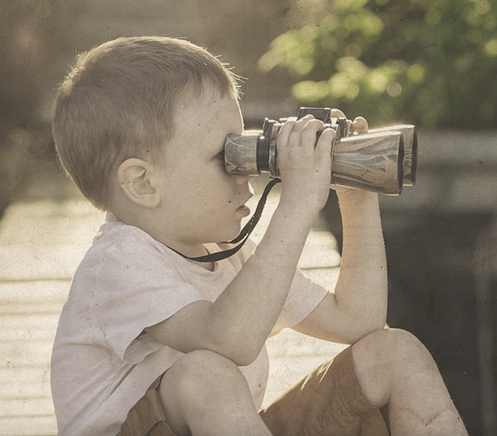 Audit campaign binoculars